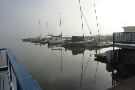 misty marina_edited-1